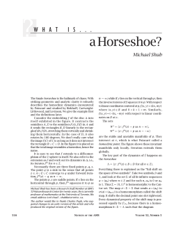 a Horseshoe? Michael Shub