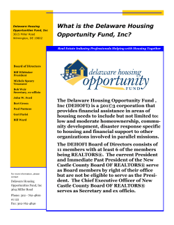 What is the Delaware Housing Opportunity Fund, Inc?
