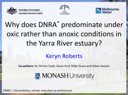 Why does DNRA predominate under oxic rather than anoxic conditions in