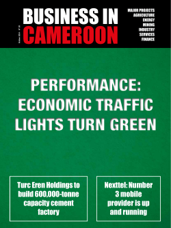 CAMEROON BUSINESS IN PERFORMANCE: ECONOMIC TRAFFIC