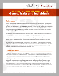 Genes, Traits and Individuals  Background t h e