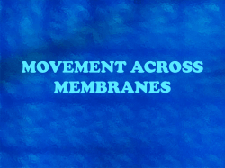MOVEMENT ACROSS MEMBRANES