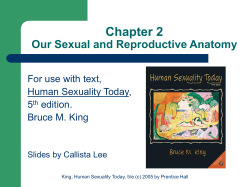 Chapter 2 Our Sexual and Reproductive Anatomy For use with text,