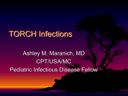 TORCH Infections Ashley M. Maranich, MD CPT/USA/MC Pediatric Infectious Disease Fellow