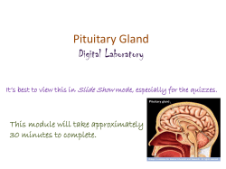 Pituitary Gland Digital Laboratory This module will take approximately 30 minutes to complete.