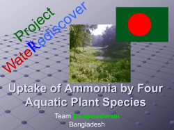 Uptake of Ammonia by Four Aquatic Plant Species Team Bangladesh