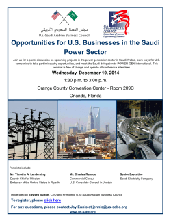 Opportunities for U.S. Businesses in the Saudi Power Sector