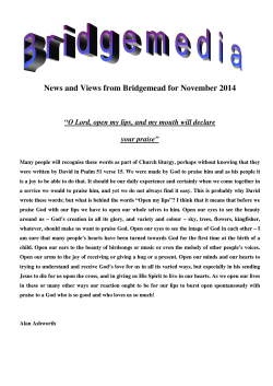 News and Views from Bridgemead for November 2014  your praise""