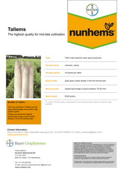 Tallems The highest quality for mid-late cultivation