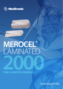 merocel® Laminated - 2013 Annual Report