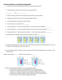 WATER POTENTIAL and OSMOSIS WORKSHEET