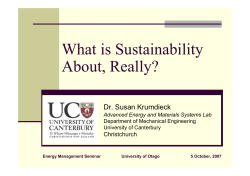 What is Sustainability About, Really?