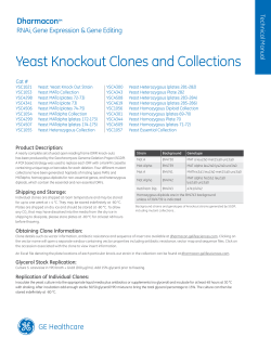 Yeast Knockout Clones and Collections