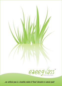 Ezee Grass - BLOOMS SURFACES