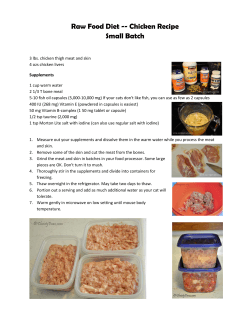 Raw Food Diet -- Chicken Recipe Small Batch