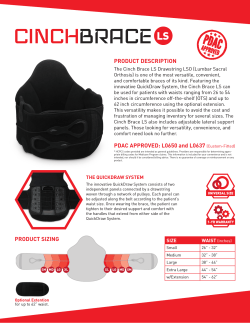Cinch Brace LS Marketing Sheet