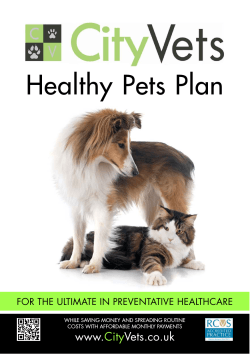 Healthy Pets Plan - City Vets Exeter