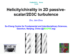 Helicity/chirality in 2D passive