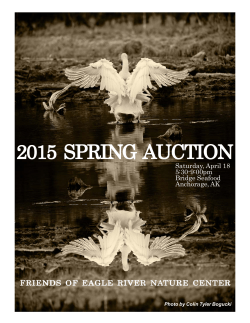 Auction Program 2015.pmd - Eagle River Nature Center
