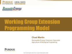 Working Group Extension Programming Model