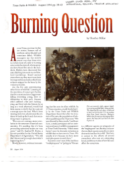 """The Burning Question,"" asking if environmental damage"