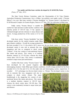 New paddy and faba bean varieties developed by ICAR RCER, Patna