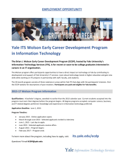Yale ITS Wolson Early Career Development Program in Information