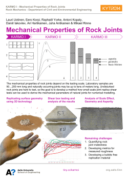 Mechanical properties of rock joints