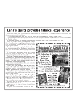 Newspaper Write-Up - Lana`s Quilts and Sew Much More