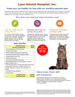 Adult Cat Wellness Plan