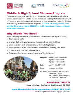 the Flyer - Mandarin Institute