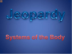 Systems of the Body Jeopardy