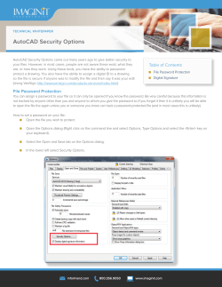 AutoCAD Security Options