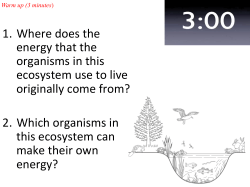 1. Where does the energy that the organisms in
