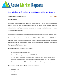 Lime Markets in Americas to 2019