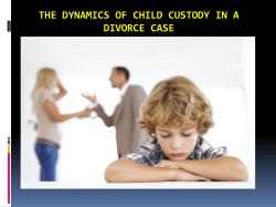 The dynamics of child custody in a divorce case