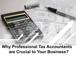 Why Professional Tax Accountants are Crucial to Your Business
