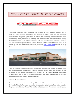 Stop Pest To Work On Their Tracks