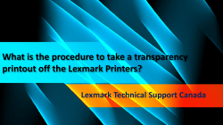 What is the procedure to take a transparency printout off the Lexmark Printers