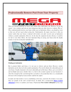 Professionally Remove Pest From Your Property