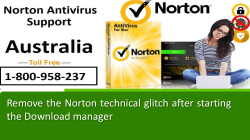 Remove the Norton technical glitch after starting the Download manager-converted
