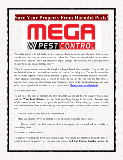 Save Your Property From Harmful Pests
