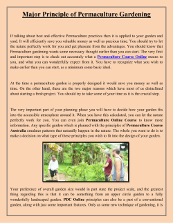 Major Principle of Permaculture Gardening